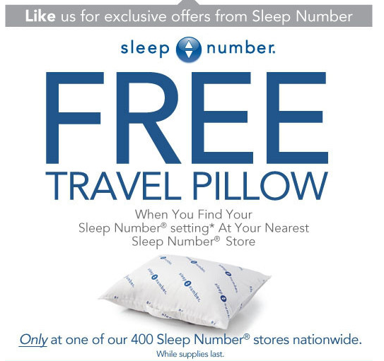 Free Sleep Number Pillow (Travel Sized) | Deal Wise Mommy ...